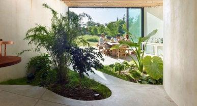 Cara membuat taman dalam ruangan