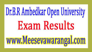 Dr.B.R Ambedkar Open University UG 3rd Year Spell-2 Nov 2016 Exam Results
