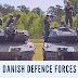Denmark Military Power 2019