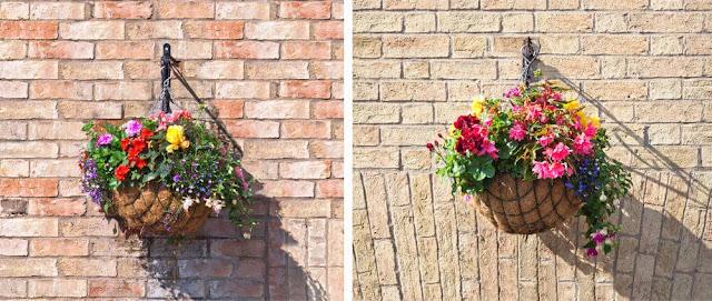 20 Kreasi Pot Bunga Gantung Unik untuk Rumah Minimalis