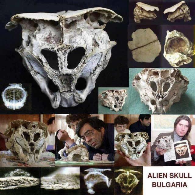 El cráneo de Rhodope, ¿un cráneo extraterrestre?
