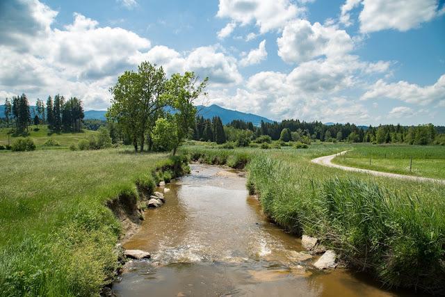 Staffelsee-Rundweg  Wanderung bei Murnau – Das Blaue Land 13