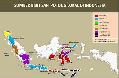 Pelestarian dan Pengembangan Sapi Bali