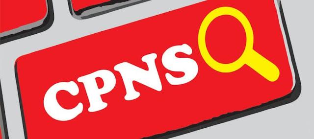 6 Info Resmi Lowongan CPNS Tahun 2017