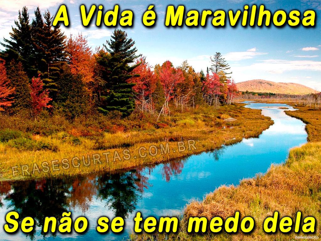 Imagens Com Frases De Amor Acabado