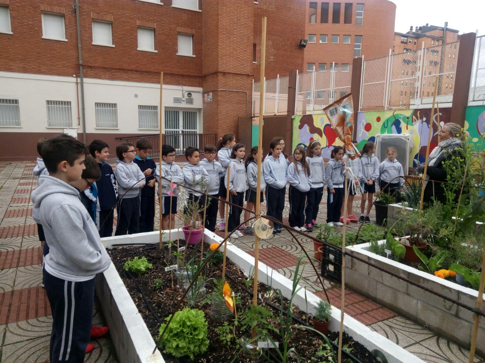 Agustinas Valladolid - 2017 - Primaria - Huertagus
