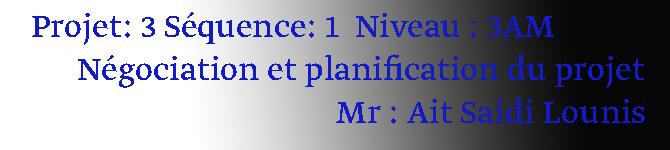 Projet n°03  Séquence 01  Niveau : 3AM Négociation et planification du projet.