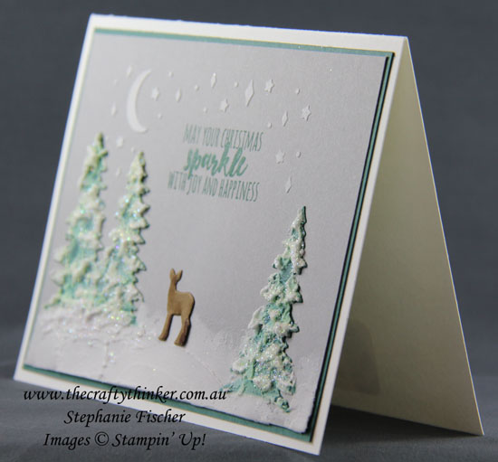 Cardfront Builder, Embossing Paste, Christmas Card, #thecraftythinker, Stampin' Up Australia Demonstrator, Stephanie Fischer, Sydney NSW