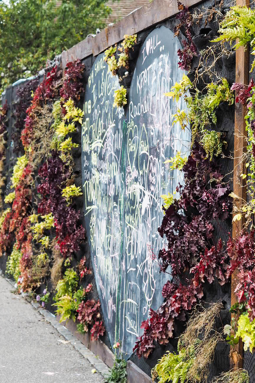 Living wall, Margate
