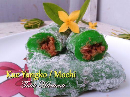 Kue Yangko atau Mochi hasil recook dari internet