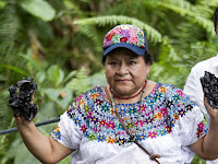 Nobel Peace Prize winner Rigoberta Menchu, an indigenous people's rights activist, shows her hands covered with oil during a protest in Lago Agrio in Ecuador near the site of oil exploration by Chevron's Texaco subsidiary (Credit: Reuters) Click to Enlarge.
