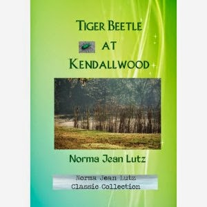 norma jean lutz, tiger beetle at kendallwood