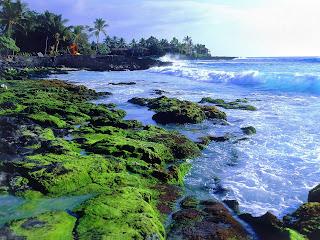 Kona Coast252C Big Island252C Hawaii   erc
