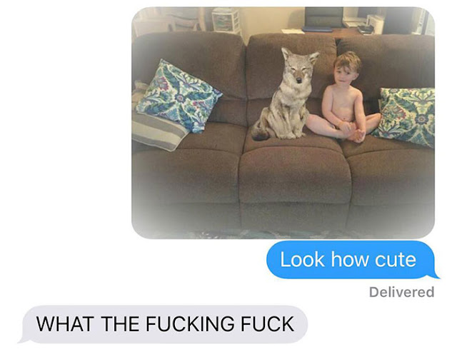 Husband Freaks Out After Wife Texted Him That She Brought A Cute Dog, But It Turns Out That It Isn't What Both Of Them Thought It Was!