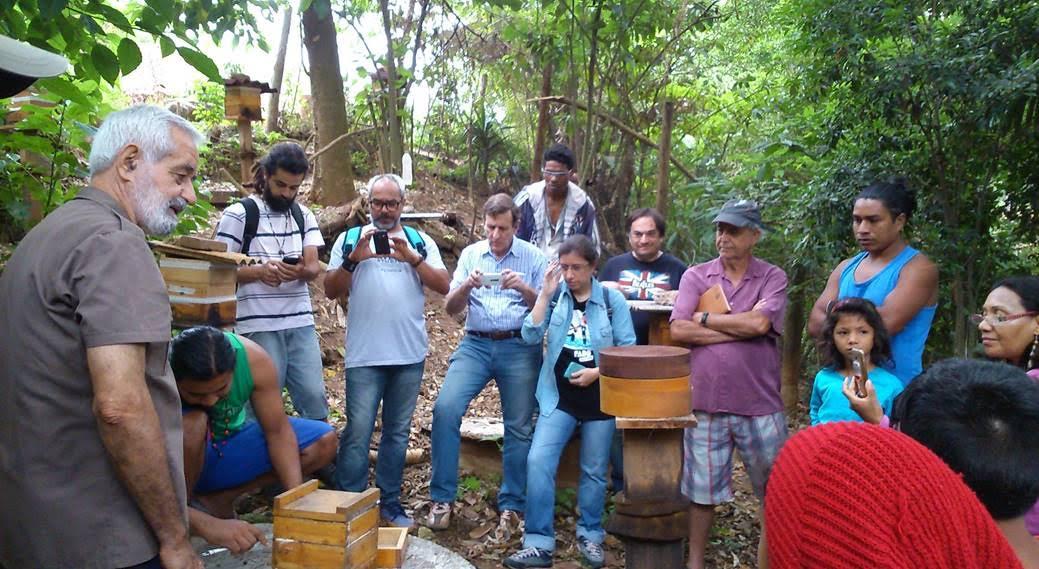 """Aula prática do 1º Curso de criação racional de abelhas sem ferrão"""".  Foto: acervo Mitsiotis"""