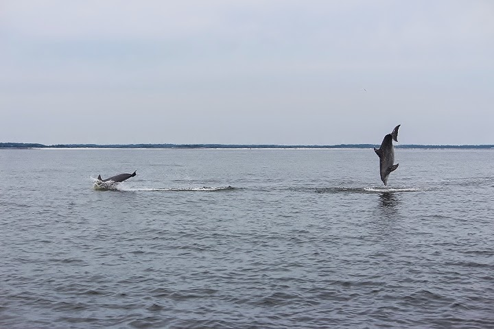 It's more than just fishing...
