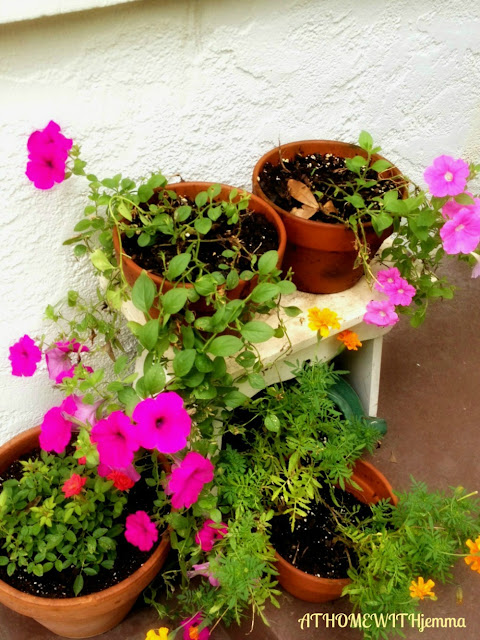 potting bench, purple flowers, petunias, clay pots, decorating with pots