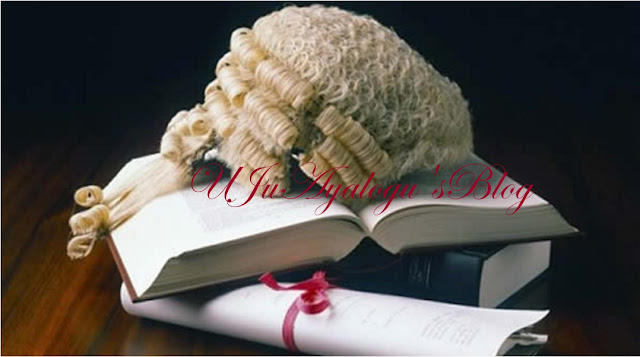 20 SANs Form Group To Reform Justice Delivery In Nigeria {FULL LIST)