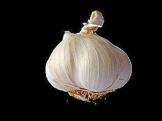 Jenis-jenis bawang