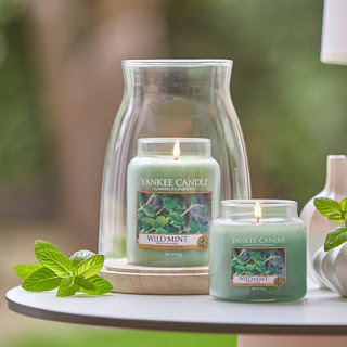 wild-mint-yankee-candle