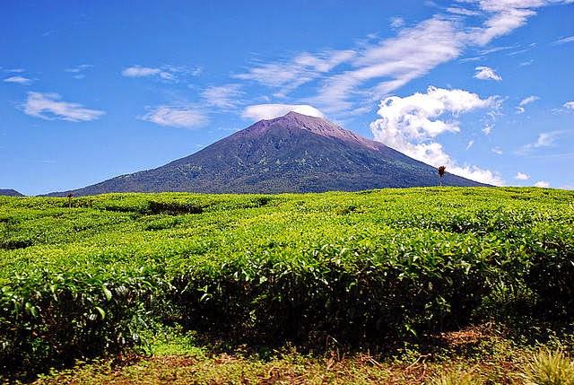 kerinci adalah gunung berapi tertinggi di indonesia gunung ini merupakan luar pulau papua terletak provinsi
