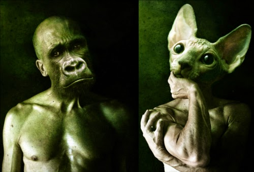 00-Francesco-Sambo-Man-Animal-Hybrids-Mashup-Photography-www-designstack-co