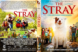 The Stray - Cover DVD