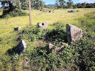 MENHIRS / Parque Megalitico dos Coureleiros, Castelo de Vide, Portugal