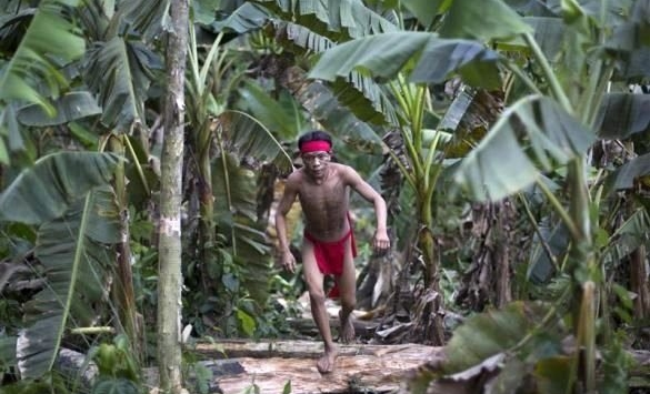Yanomami3.jpg