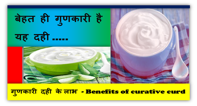 गुणकारी दही के लाभ  - Benefits of curative curd
