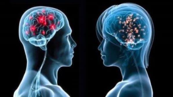علماء اكتشاف الجينات التي تتحكم في اختلافات عقول الرجال والنساء