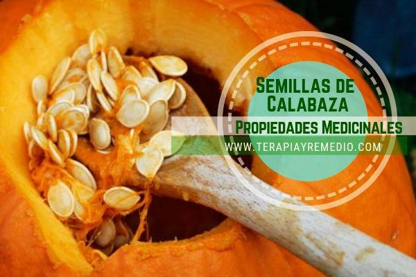 Las semillas de calabaza tiene propiedades antioxidantes, fuentes de omega-3 entre otras, valoradas como un alimento natural muy importante para la salud