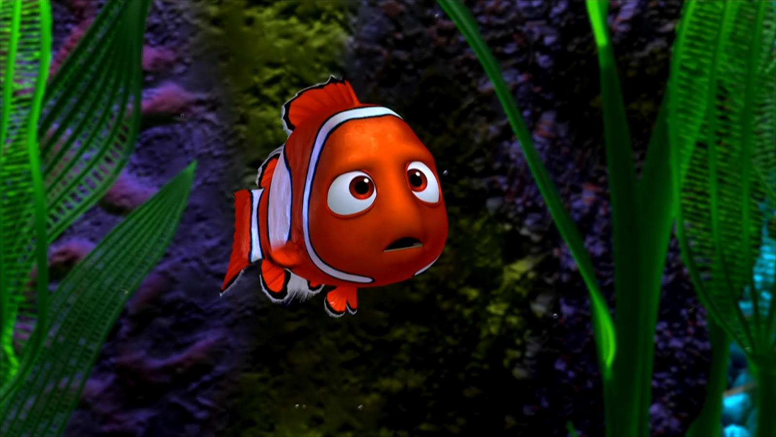 Animation Movie Geek: Finding Nemo Wallpapers