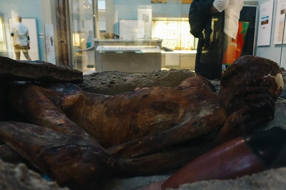 復元された墓穴に置かれた自然保存の男性遺体(Predynastic Egyptian man)