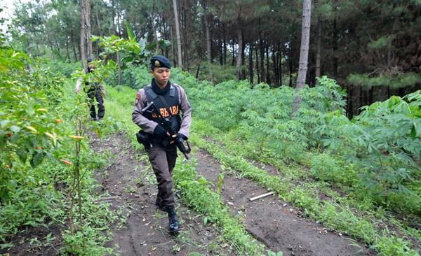 Teroris Santoso Belum Tertangkap, Jendral Polisi AKan Turun Tangan