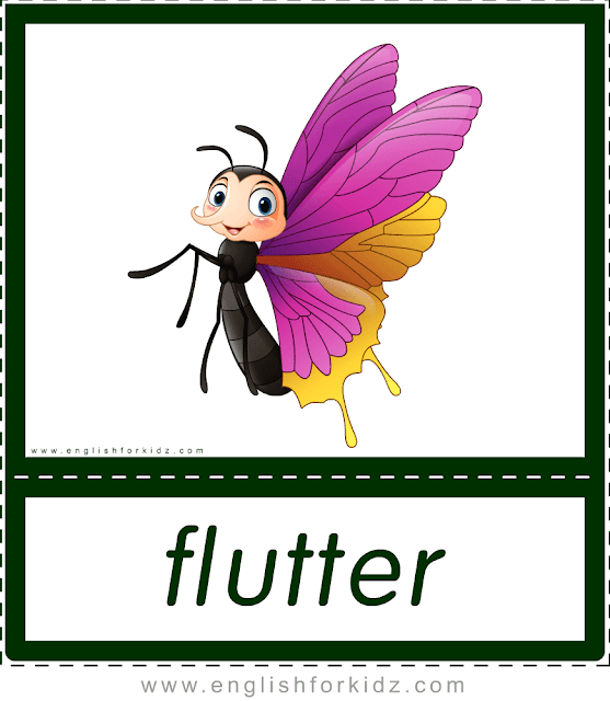 Verb flutter (butterfly) - printable animal actions flashcards for English learners