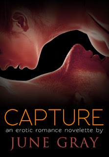 Mini Review: Capture by June Gray