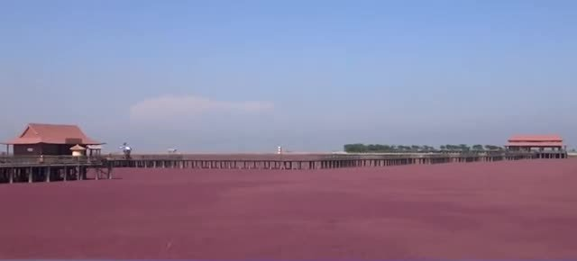 10 AMAZING PLACES AROUND THE WORLD 7. Red Beach, China