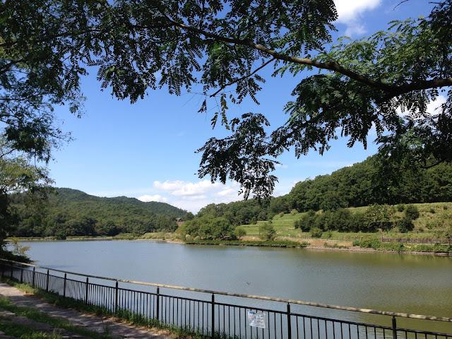 イメージ画像:湖のある風景