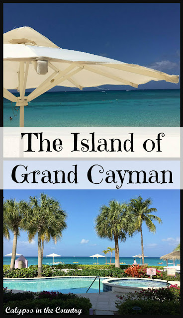Grand Cayman Family Activities