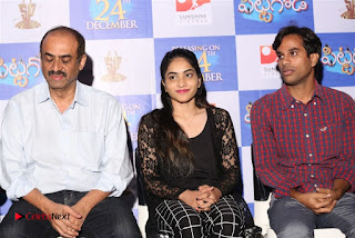 Pittagoda Telugu Movie Press Meet  0011.jpg