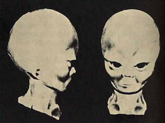 Planet Serpo: A True Story Of A Secret Interplanetary Journey Project?
