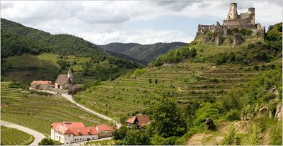 paesaggi vino austria