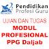 Tugas Akhir/Final Assignment M1 Profesional Bahasa Inggris (Contoh 2)
