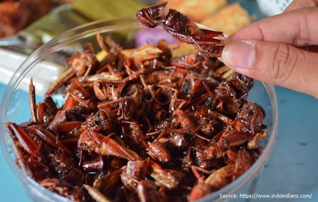 Jenis-Jenis Masakan Khas Wonosari