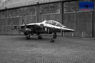 RAF SEPECAT Jaguar Raspberry Ripple Cosford