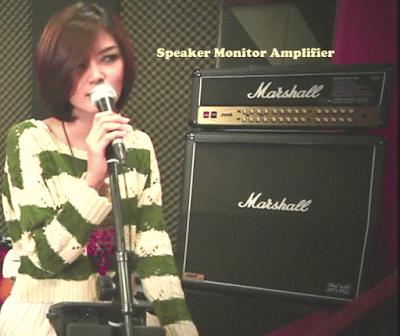 Speaker Monitor Amplifier