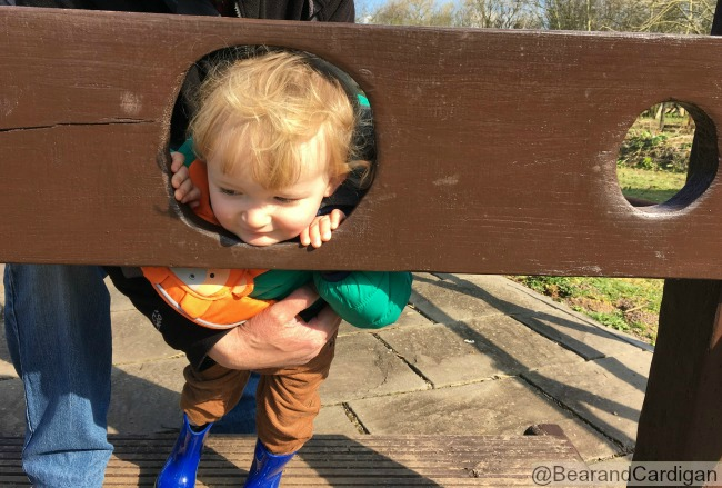 toddler with head and hands through one hole in stocks