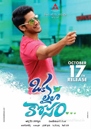 Oka Laila Kosam 2014 HDRip 400Mb Hindi Dubbed Dual Audio 480p Watch Online Full Movie Download bolly4u