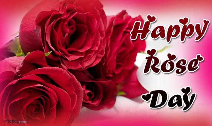 rose day images yellow